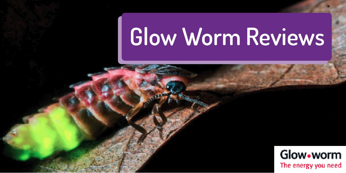glow worm boiler reviews