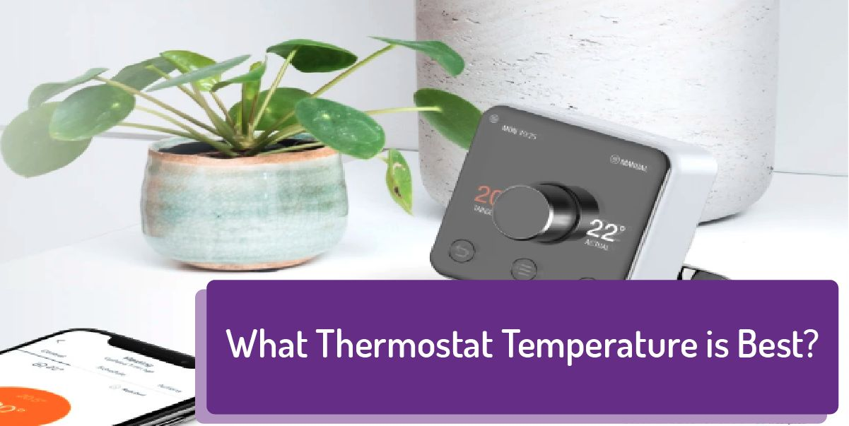 What Temperature Should the Thermostat Be Set At